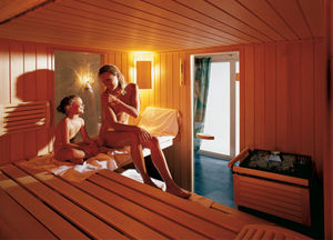 planning a sauna without sweating. Black Bedroom Furniture Sets. Home Design Ideas