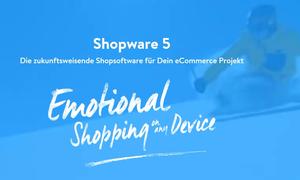 Shopware 5 Kurz Vorgestellt Diewebag
