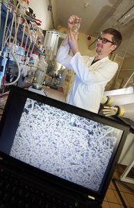 Forscher mit biofilmartiger Aggregatbildung (Foto: Jan-Peter Kasper/uni-jena.de)