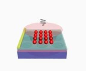 Bakterien-Sensor mit Plättchen aus Graphen (Grafik: Bing-Gang Xiao, cjlu.edu.cn)