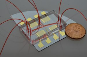 Raschere Tests mit Acoustofluidics (Foto: The Journal of Molecular Diagnostics)